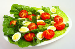 Gourmet quails egg and tomato salad Stock Photography