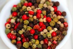 Gourmet Rainbow Peppercorns Royalty Free Stock Images