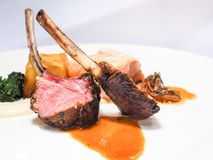 Gourmet rib beef steak . Gourmet rib beef steak ready to serve on white plate stock images