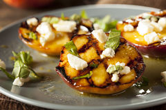 Gourmet Roasted Peaches with cheese and basil Stock Image
