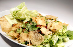 Gourmet salad 2 Royalty Free Stock Images