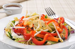 Gourmet salad Royalty Free Stock Images