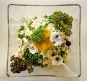Gourmet salad. In transparent dish stock image