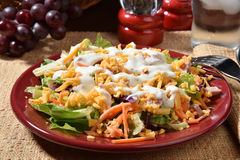 Gourmet salad Stock Images