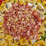 Gourmet salad with spicy bacon Stock Images
