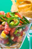 Gourmet Salsa Stock Photos