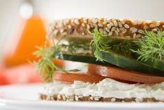 Gourmet sandwich Royalty Free Stock Photo
