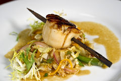 Gourmet Scallop Dish Stock Photo