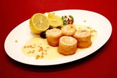 Gourmet sea food Royalty Free Stock Photos
