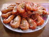 Gourmet seafood meal - boiled shrimps ready to serve Royalty Free Stock Image