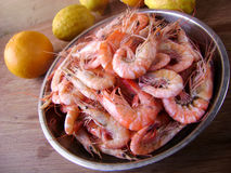 Gourmet seafood meal - many shrimps Royalty Free Stock Photography