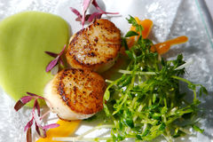 Gourmet seared scallops with garnishes Stock Photos