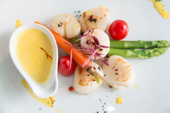 Gourmet seared scallops with garnishes. Royalty Free Stock Photo