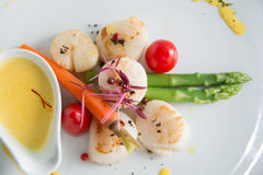 Gourmet seared scallops with garnishes. Royalty Free Stock Photography