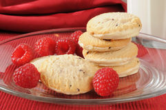 Gourmet shortbread cookies Royalty Free Stock Photos