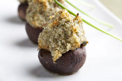 Gourmet Stuffed Mushrooms. Royalty Free Stock Photography
