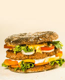 Gourmet Tasty Hamburger with Copy Space on the Top Royalty Free Stock Photography