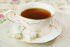 Gourmet tea cup with sugar cubes Royalty Free Stock Photography