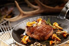 Gourmet thick marinated grilled wild venison steak. With autumn mushrooms in a metal pan with blurred shed deer antler behind stock photo