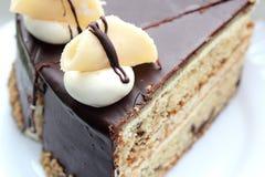 Gourmet torte Royalty Free Stock Photo