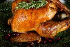 Roasted holiday turkey garnished with fresh herbs stock image