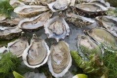 gourmets γεύμα Στοκ εικόνα με δικαίωμα ελεύθερης χρήσης