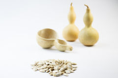 Gourp and seeds Stock Image
