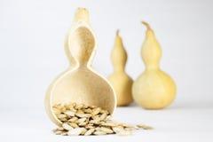 Gourp und Samen Stockfotos