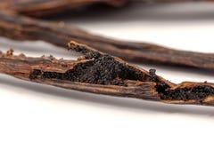 Gousses de vanille sur le bâton criqué Photographie stock