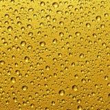 Goutte d'or de l'eau Images libres de droits