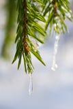Goutte de l'eau gelée Photographie stock libre de droits