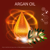 Gouttelette d'Argan Oil Serum Essence 3D avec la branche Photo libre de droits