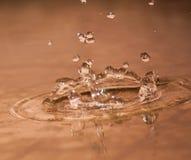 Gouttelettes d'eau de pluie Photographie stock