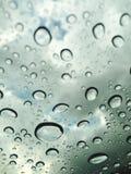 Gouttelettes fraîches de pluie Photographie stock libre de droits