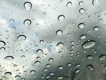Gouttelettes fraîches de pluie Images libres de droits