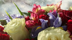 Gouttes de l'eau tombant sur le beau bouquet des roses, de l'iris et de l'alstroemeria clips vidéos