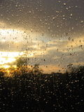 Gouttes de pluie gentilles après pluie Image libre de droits