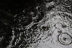 Gouttes de pluie sur le fond surface-noir et blanc de l'eau Photographie stock