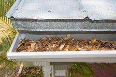 Gouttière de pluie obstruée avec des feuilles Image stock