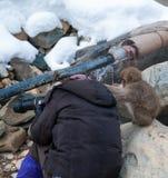 Governare il fotografo Fotografie Stock Libere da Diritti