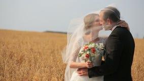 Governi baciare la sua bella sposa sul giacimento di grano giallo soleggiato video d archivio