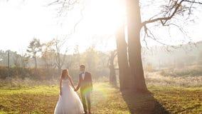 Governi e la sua bella passeggiata della sposa sul campo dentro stock footage
