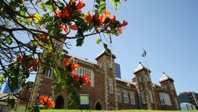 Government House Perth. Bougainvillea in foreground with sunbeams in Government House Gardens, Perth city. Government House east front, the residence of Governor stock video footage