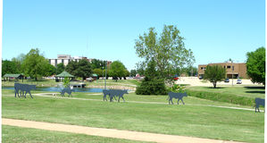 Government Springs Park, Enid, Oklahoma Royalty Free Stock Image