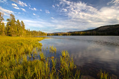 Governor Dern Lake in Utah. Governor Dern Lake is located in the Uinta Mountains Stock Photos