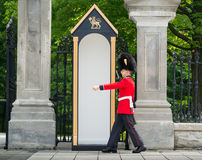 Governor Generals Footguard on Ceremonial Duty Stock Image