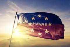Governor of Hawaii flag textile cloth fabric waving on the top sunrise mist fog vector illustration