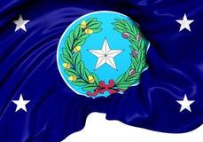 Governor of Texas Standard, USA. Stock Image
