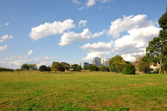 Governors Island Field. A field on Governors Island in New York City, just south of Manhattan Stock Photo