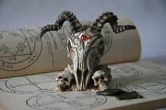 głowa uzbrajać w rogi sarniaka s Zdjęcie Royalty Free